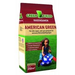 Seminte gazon Green Field American Green